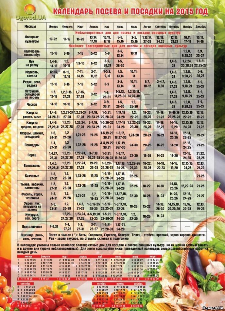 Лунный посевной календарь на февраль 2018 год